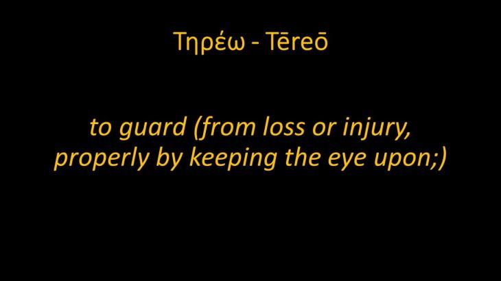 Tereo - Kept or Preserved